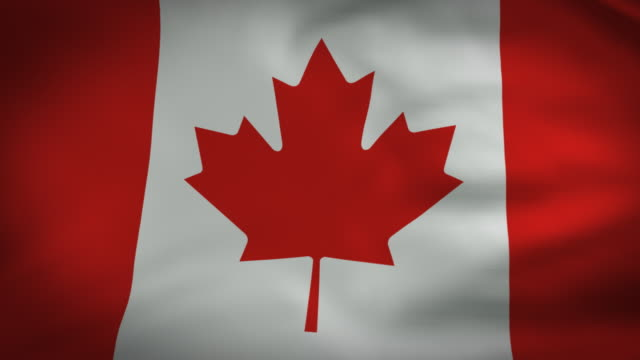 bandiera del canada video perfetto loop - bandiera del canada video stock e b–roll