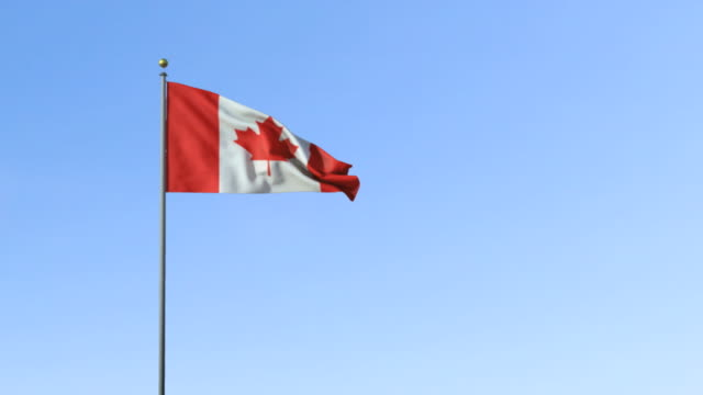ws, canadian flag waving against blue sky - bandiera del canada video stock e b–roll