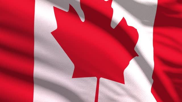非常に詳細な生地の質感で風に手を振るカナダの旗。シームレスループ - 旗棒点の映像素材/bロール