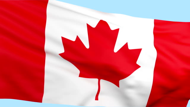 Canadian flag waving loopable