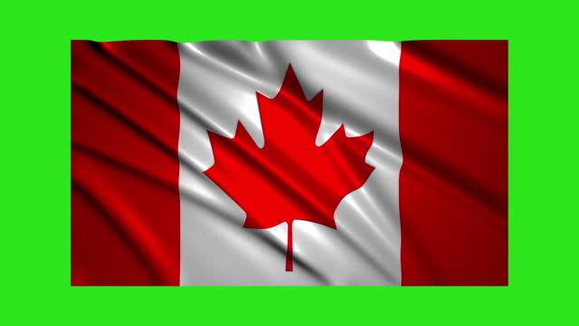 Canadian flag waving,loopable on green screen