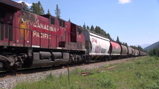 ms canadian pacific railway at bow valley near lake louise / banff national park, alberta, canada - traditionally canadian stock videos & royalty-free footage