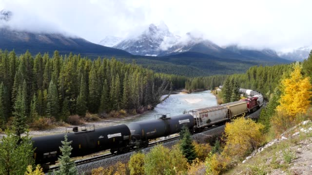 vídeos de stock e filmes b-roll de canadian pacific railway long freight passing in autumn valley on bow river at morant's curve - divisa