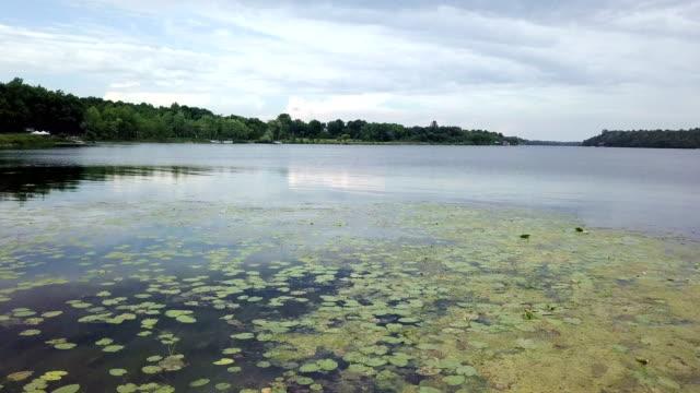 stockvideo's en b-roll-footage met canadese provincial park, ontario - ontariomeer