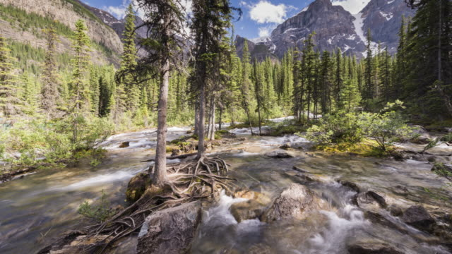 Canadian Rockies: Moraine Lake