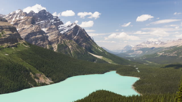 canadian rockies: peyto lake - evergreen stock videos and b-roll footage