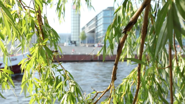canal boat - kreuzfahrtschiff stock videos and b-roll footage