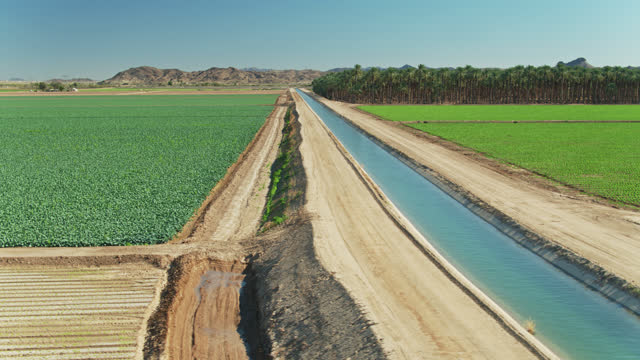 canal irrigating imperial county farmland in california in winter - aerial - canal stock videos & royalty-free footage