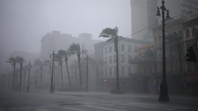 canal street and bourbon street being inundated by wind and rain during hurricane ida in new orleans. hurricane ida barreled into the louisiana coast... - new orleans stock videos & royalty-free footage