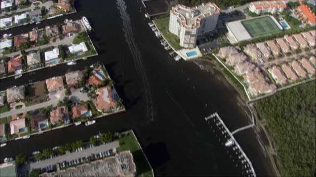 aerial, canals and coastline, miami, florida, usa - fan palm tree stock videos & royalty-free footage
