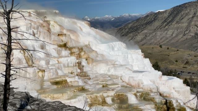 kanarische reine frühling, mammoth hot springs, yellowstone nationalpark - natürliches thermalbecken stock-videos und b-roll-filmmaterial