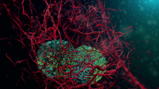 cancer cells - swine influenza virus stock videos and b-roll footage