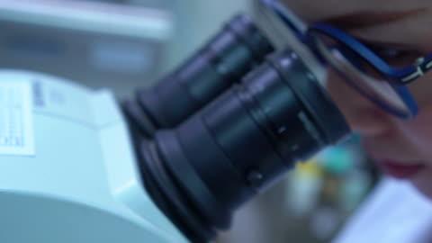 がん研究 - 幹細胞点の映像素材/bロール
