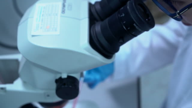 がん研究 - がん細胞点の映像素材/bロール