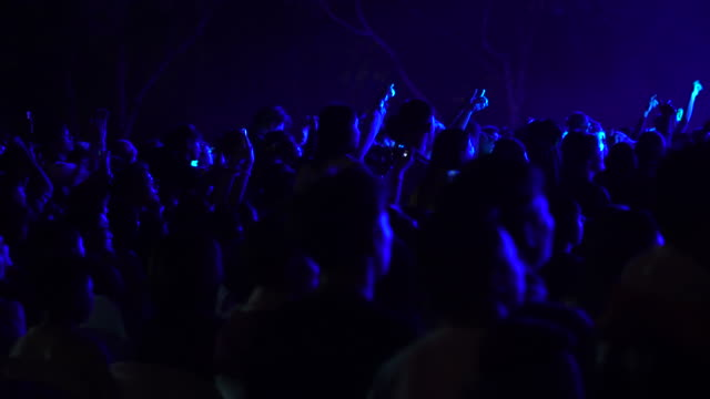 candid image of crowd enjoying at rock concert - atmosphere filter stock videos & royalty-free footage