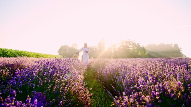 stockvideo's en b-roll-footage met slo mo candid shot van een vrouw onder lavendel - witte jurk