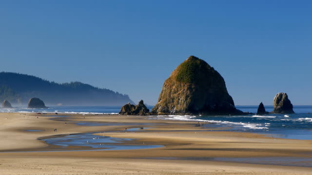 cannon beach in oregon usa - oregon coast stock videos & royalty-free footage