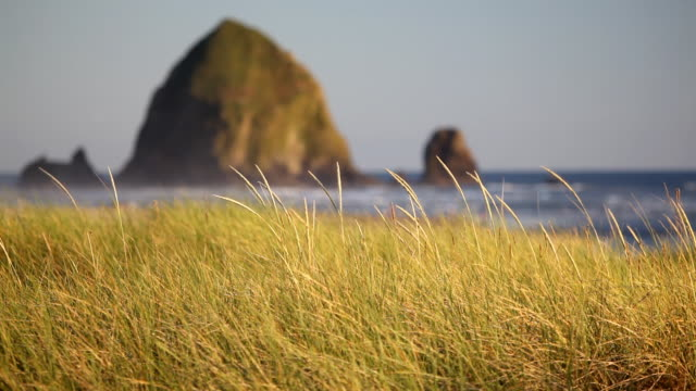 hd cannon beach oregon landscape - cannon beach stock videos & royalty-free footage