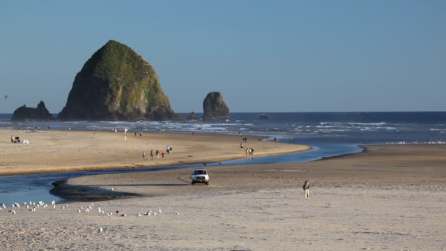hd cannon beach oregon us - cannon beach stock videos & royalty-free footage