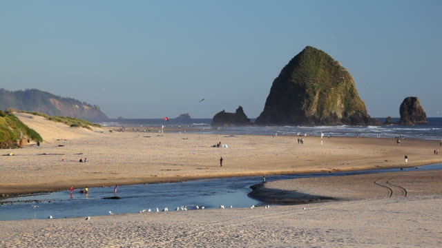 stockvideo's en b-roll-footage met hd cannon beach oregon - oregon coast