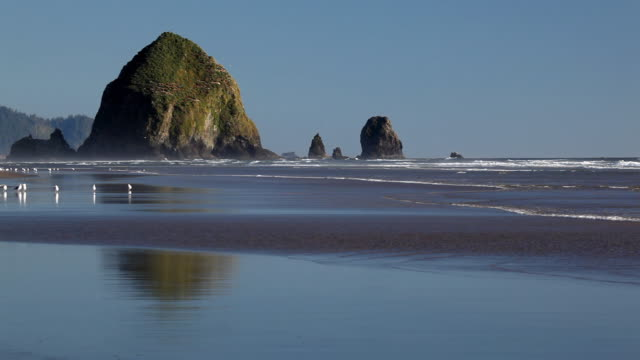 hd cannon beach oregon - cannon beach stock videos & royalty-free footage