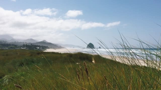 cannon beach - cannon beach stock videos & royalty-free footage