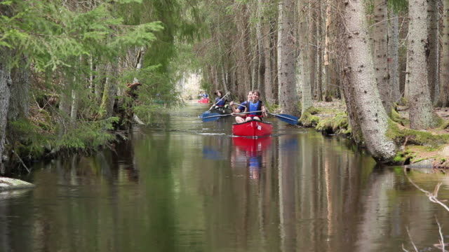 Canoe / Kayaking river trip through trees