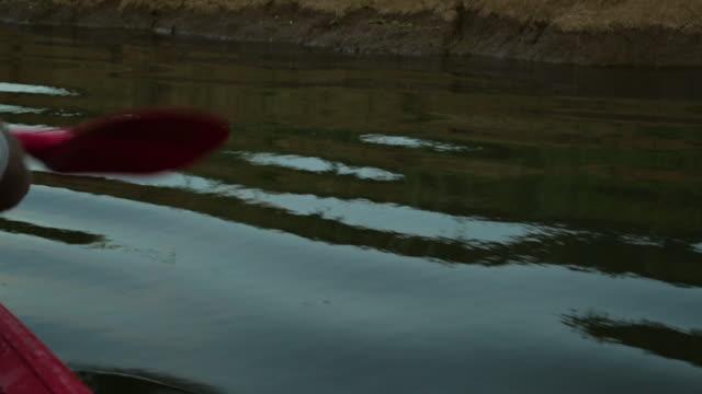 vidéos et rushes de canoe paddling along a river bank, qld - extreme close up