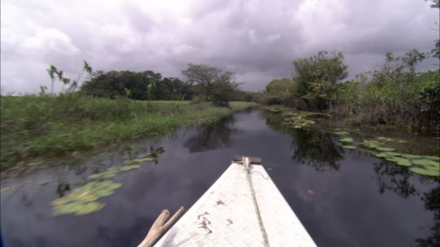 A canoe travels quickly through wetlands.