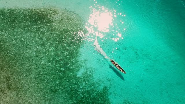 vídeos de stock e filmes b-roll de canoeing on a turquoise lagoon. aerial view - floresta pluvial