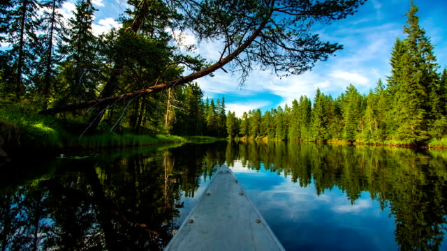 pov canoeing on calm swedish lake - boat point of view stock videos & royalty-free footage