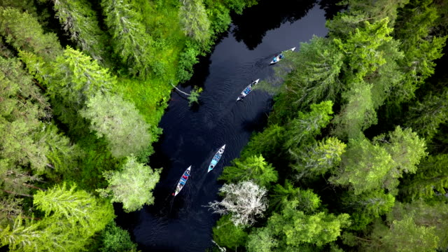 aerial: canoeing on wilderness river in sweden - small boat stock videos & royalty-free footage
