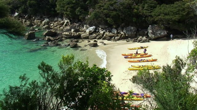 WS HA Canoes on beach at Bark Bay / Abel Tasman National Park, Marlborough, New Zealand
