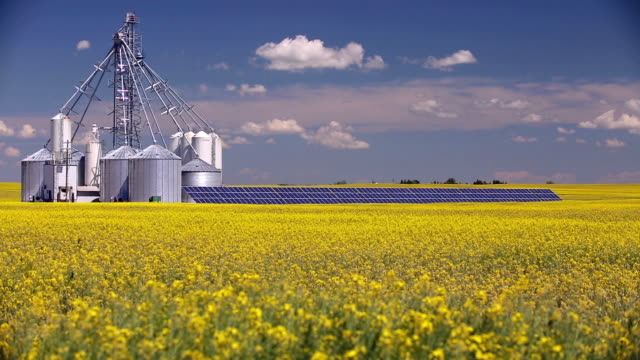 canola grain silo solar panel - deposito video stock e b–roll