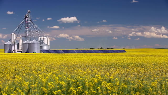 canola grain silo solar panel - alberta stock videos & royalty-free footage