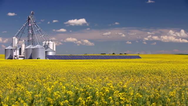 vídeos de stock, filmes e b-roll de do painel solar de silo de grãos de canola - alberta