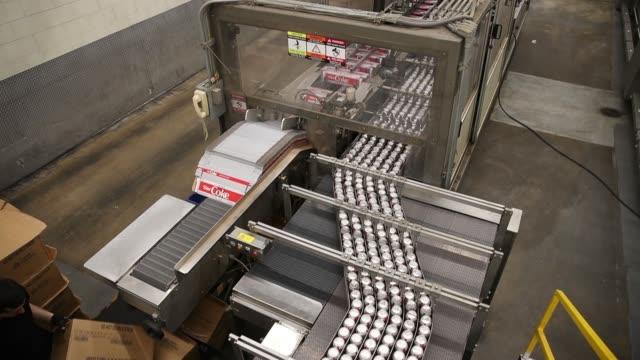 vídeos y material grabado en eventos de stock de cans of diet coke make their way down a conveyor belt at swire coco cola on march 12 2019 in west valley city utah usa - diet coke