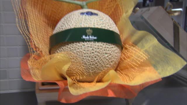 vídeos de stock e filmes b-roll de cu tu cantaloupe on display, tokyo, japan - melão de casca de carvalho