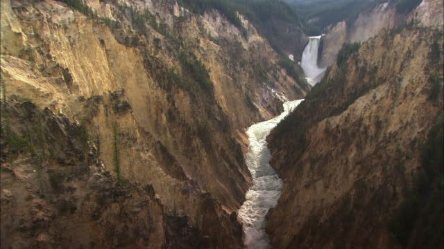 ws canyon river full of whitewater rapids and waterfall in yellowstone national park / wyoming, usa - falling water stock videos & royalty-free footage