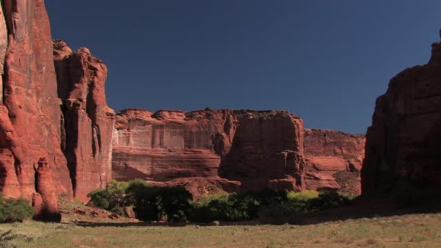 WS Canyon walls with trees at bottom/ Canyon de Chelly National Monument, Arizona