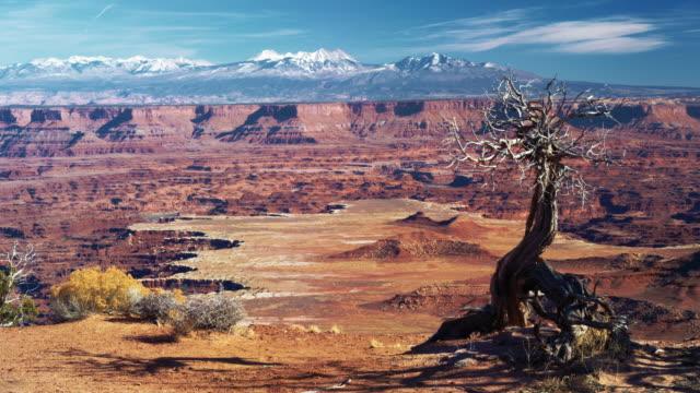 canyonlandswidecf - canyonlands national park stock videos & royalty-free footage