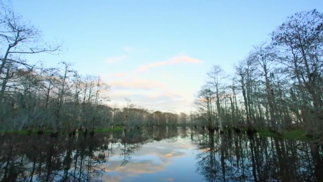 vídeos y material grabado en eventos de stock de cape canaveral swamps - perspectiva desde una barca