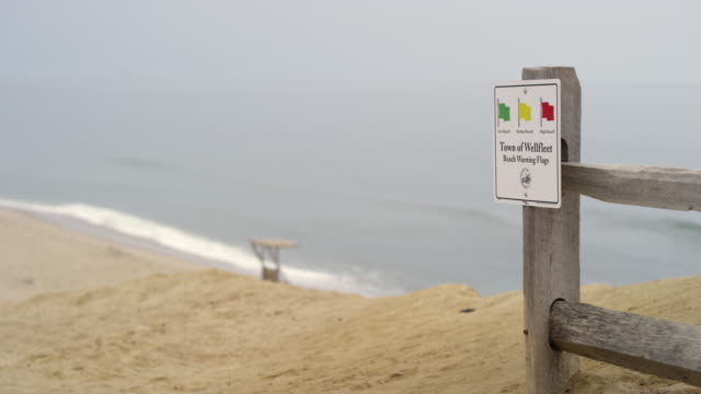 cape cod beach with sand and surd and beach sign - western script stock videos & royalty-free footage