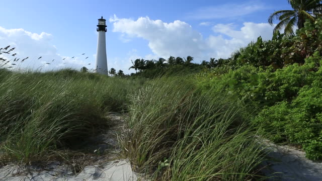 cape florida lighthouse - jacksonville florida stock videos and b-roll footage