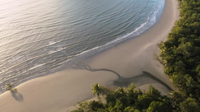 cape tribulation - queensland stock videos & royalty-free footage
