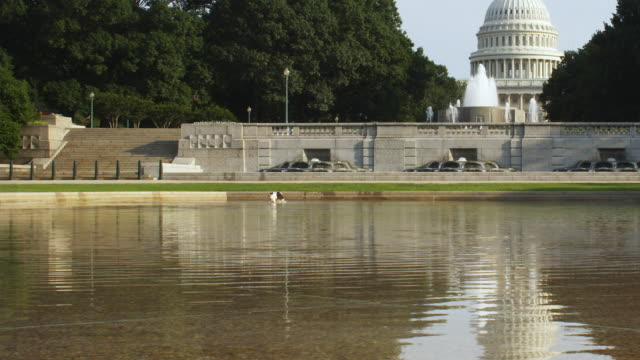 zo ws capitol seen across pond and fountain / washington d.c., usa - fountain stock videos & royalty-free footage