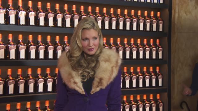 caprice bourret at cointreau: creative crew - launch event at hotel cafe royal on october 27, 2015 in london, england. - caprice bourret video stock e b–roll