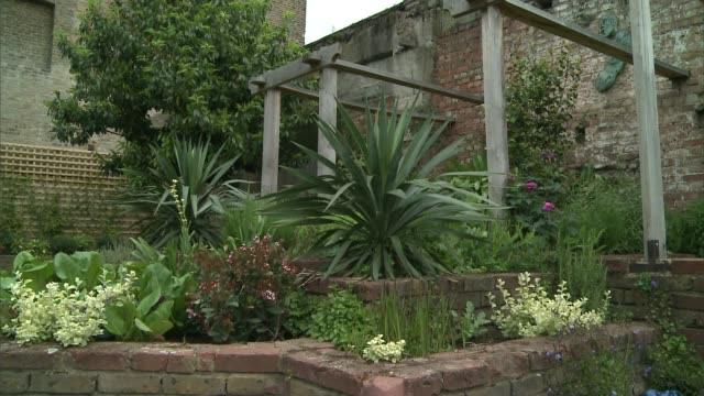 caprice donates 120,000 pounds of own money to transform community garden; england: london: westbourne park: meanwhile gardens: ext daisies pull... - caprice bourret video stock e b–roll