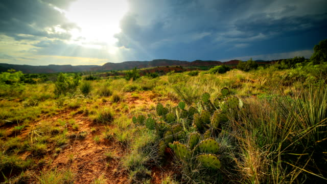 caprock canyon state park - physical geography stock videos & royalty-free footage