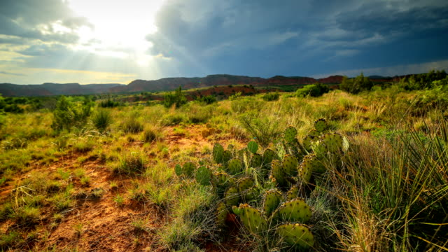 caprock canyon state park - texas stock videos & royalty-free footage